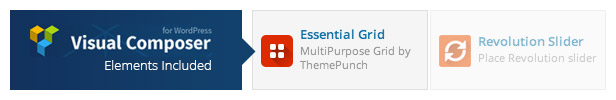 Essential Grid WordPress Plugin 39