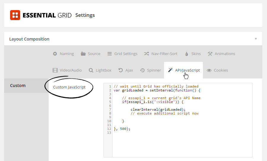 Custom CSS / JavaScript – ThemePunch