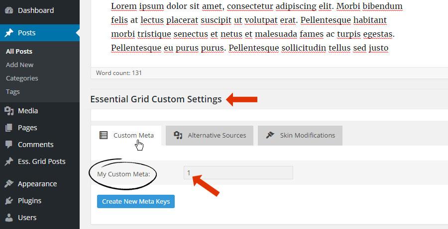 Grid Item Display Order – ThemePunch