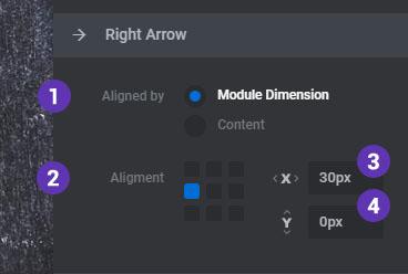 Navigation Arrows – ThemePunch
